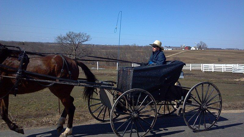 Amish Tour Cashton